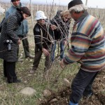 Lessons on vineyard care follow the toast