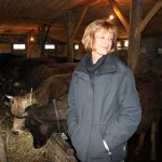 Former farm girl, Lila Tocci, is at home with the cows